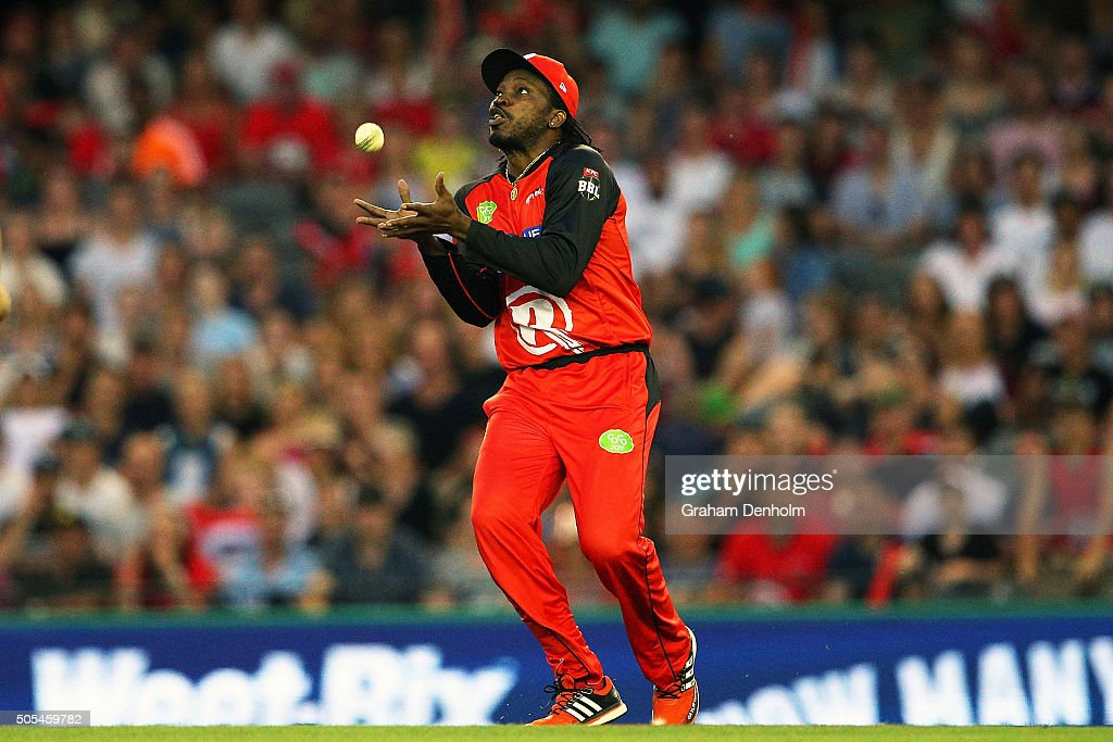 <a gi-track='captionPersonalityLinkClicked' href=/galleries/search?phrase=Chris+Gayle+-+Cricket+Player&family=editorial&specificpeople=206191 ng-click='$event.stopPropagation()'>Chris Gayle</a> of the Renegades takes a catch to dismiss Tim Ludeman of the Strikers during the Big Bash League match between the Melbourne Renegades and the Adelaide Strikers at Etihad Stadium on January 18, 2016 in Melbourne, Australia.