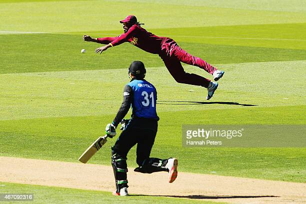 Chris Gayle of West Indies fields during the 2015 ICC Cricket World Cup match between New Zealand and the West Indies at Wellington Regional Stadium...