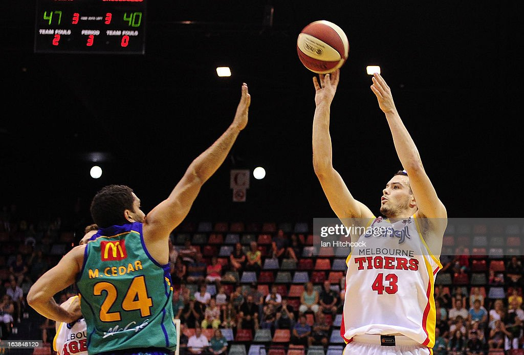 Chris Goulding of the Tigers makes a jump shot over Michael Cedar of the Crocodiles during the round 23 NBL match between the Townsville Crocodiles and the Melbourne Tigers at Townsville Entertainment Centre on March 17, 2013 in Townsville, Australia.