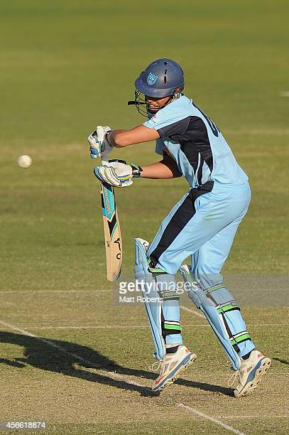Chris Green of the Blues bats during the Matador BBQs One Day Cup match between New South Wales and South Australia at Allan Border Field on October...