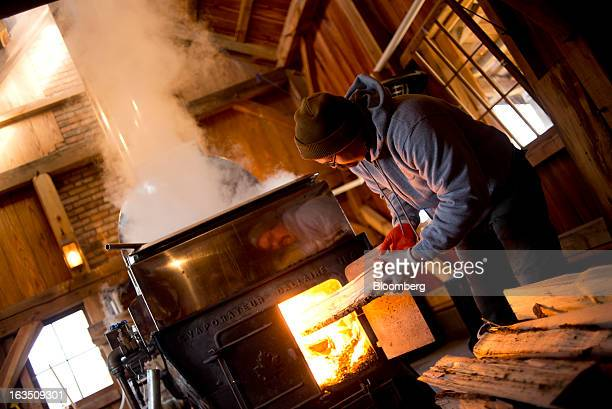 Chris Grossman loads wood into a wood burner while boiling maple sap in the evaporator in the sugar shack at Grossman Brothers Maple Products in...