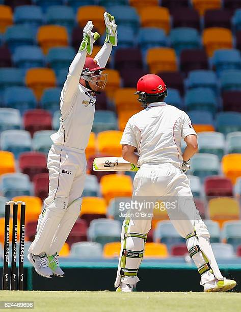 Chris Hartley of the Bulls celebrates the Dismissal of Jake Lehmann during day four of the Sheffield Shield match between Queensland and South...