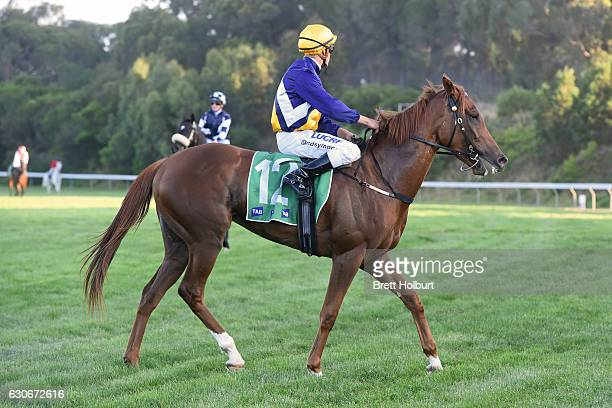 Chris Symons returns to the mounting yard on Linguist after winning Procon Developments Maiden Plate at Cranbourne Racecourse on December 30 2016 in...