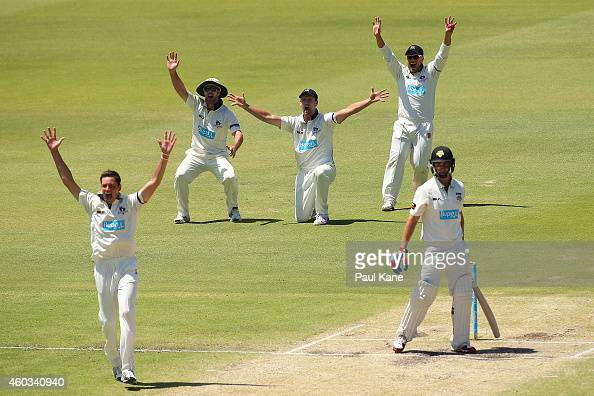 Chris Tremain Dan Christian Cameron White and Aaron Finch of Victoria appeal successfully for the wicket of Tom Beaton of Western Australia during...