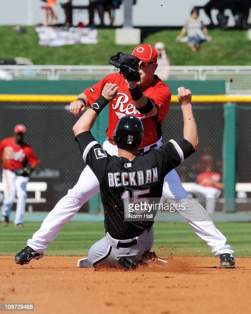 Chris Valaika of the Cincinnati Reds waits for the ball as Gordon Beckham of the Chicago White Sox slides into second base at Goodyear Ballpark on...