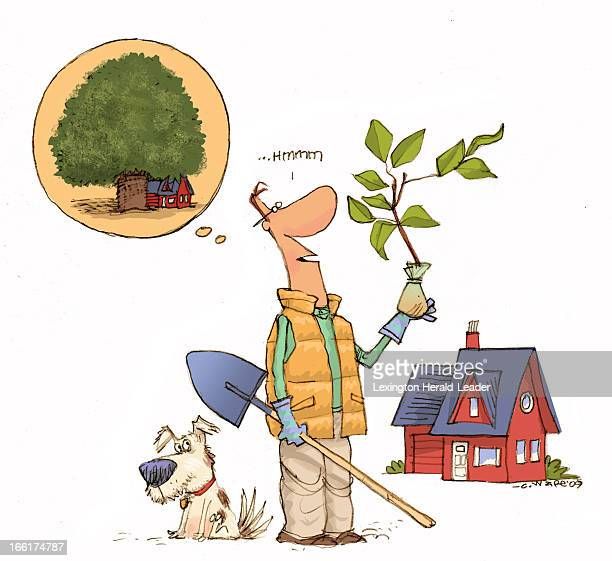 Chris Ware color illustration of man wondering how big the tree he is about to plant will be some day can be used with stories about considering tree...