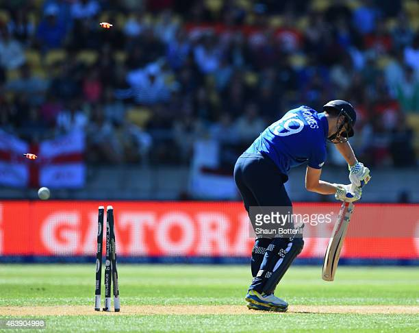 Chris Woakes of England is bowled by Tim Southee of New Zealand during the 2015 ICC Cricket World Cup match between England and New Zealand at...