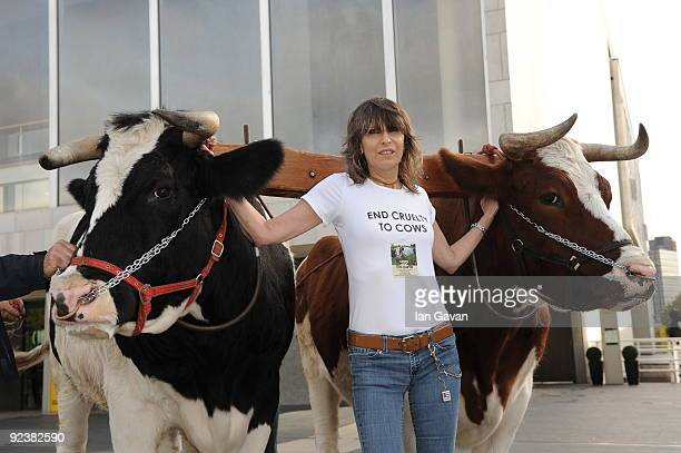 Chrissie Hynde attends photocall to launch 'Cows and the Earth A Story Of Kinder Dairy Farming' at Southbank Centre on October 27 2009 in London...