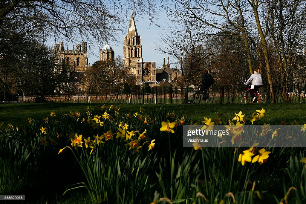 Christ Church College Oxford photographed through spring daffodils Affectionately named 'the city of dreaming spires' by nineteenth century English...