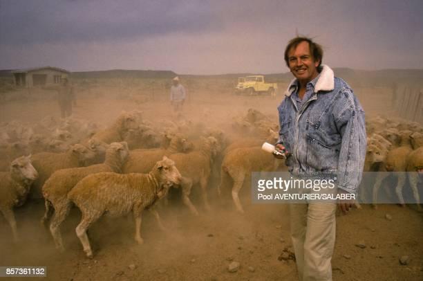 Christian Barnard le celebre chirurgien du coeur au milieu des moutons pendant un safari le 20 aout 1988 en Afrique du Sud