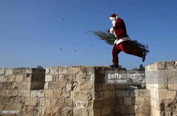 Christian Palestinian man dressed up as Santa Claus walks carrying a Christmas tree along Jerusalem's Old City walls on December 21 as Christians...