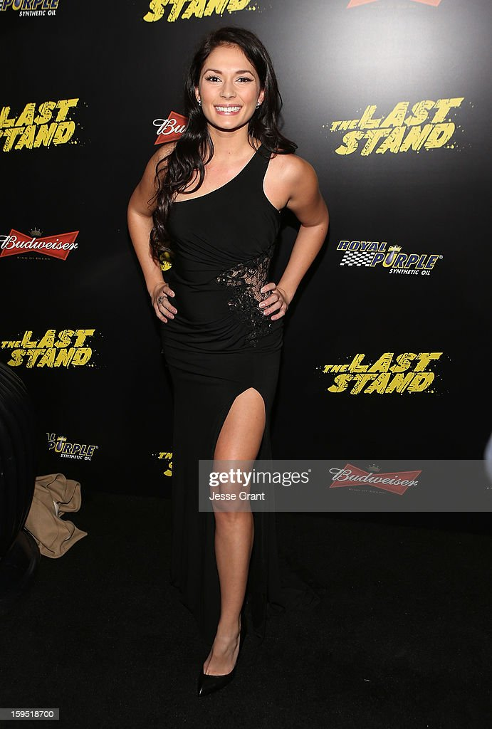 Christiana Leucas attends 'The Last Stand' World Premiere at Grauman's Chinese Theatre on January 14, 2013 in Hollywood, California.