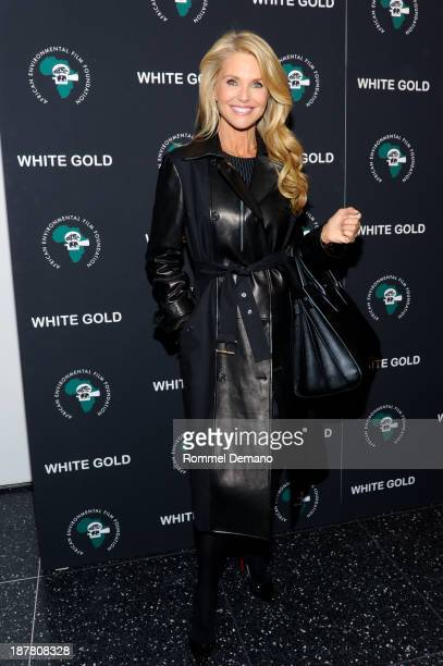 Christie Brinkley attends a special screening of 'White Gold' at Museum of Modern Art on November 12 2013 in New York City