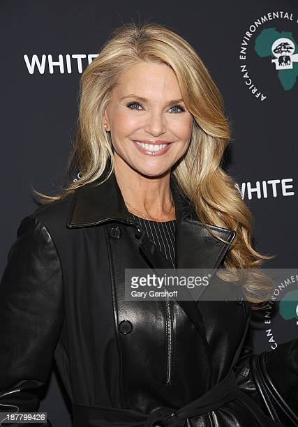 Christie Brinkley attends a special screening of 'White Gold' at the Museum of Modern Art on November 12 2013 in New York City