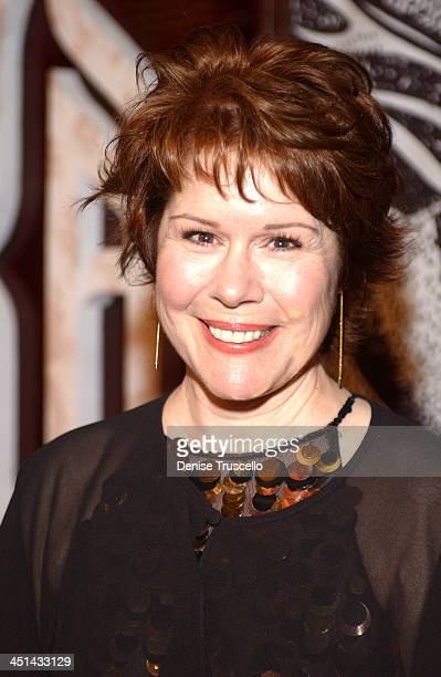 Christine Estabrook during KA Cirque Du Soleil Premiere Red Carpet at MGM Grand Hotel and Casino Resort in Las Vegas Nevada United States