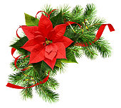 Christmas arrangement with pine twigs, poinsettia flower and red silk ribbon bow isolated on white background. Flat lay, top view.