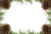 simple Christmas background with cones isolated on white