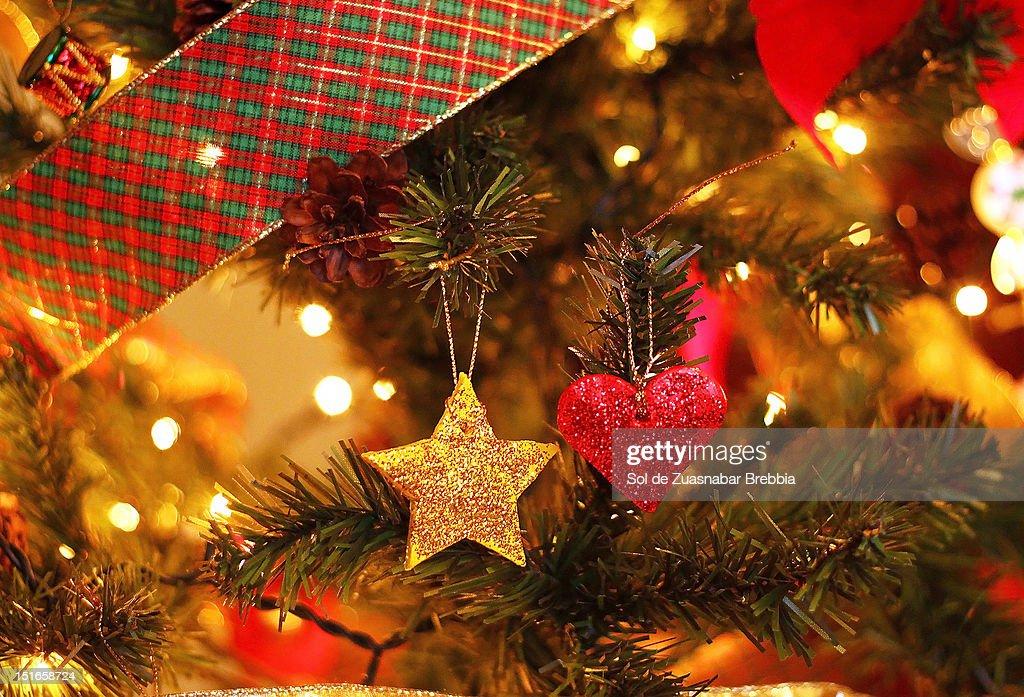 Christmas celebration : Stock Photo