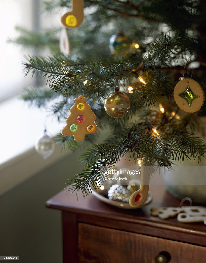 Christmas cookie ornaments on tree : Stock Photo