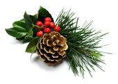 golden pine cone with holly on white background