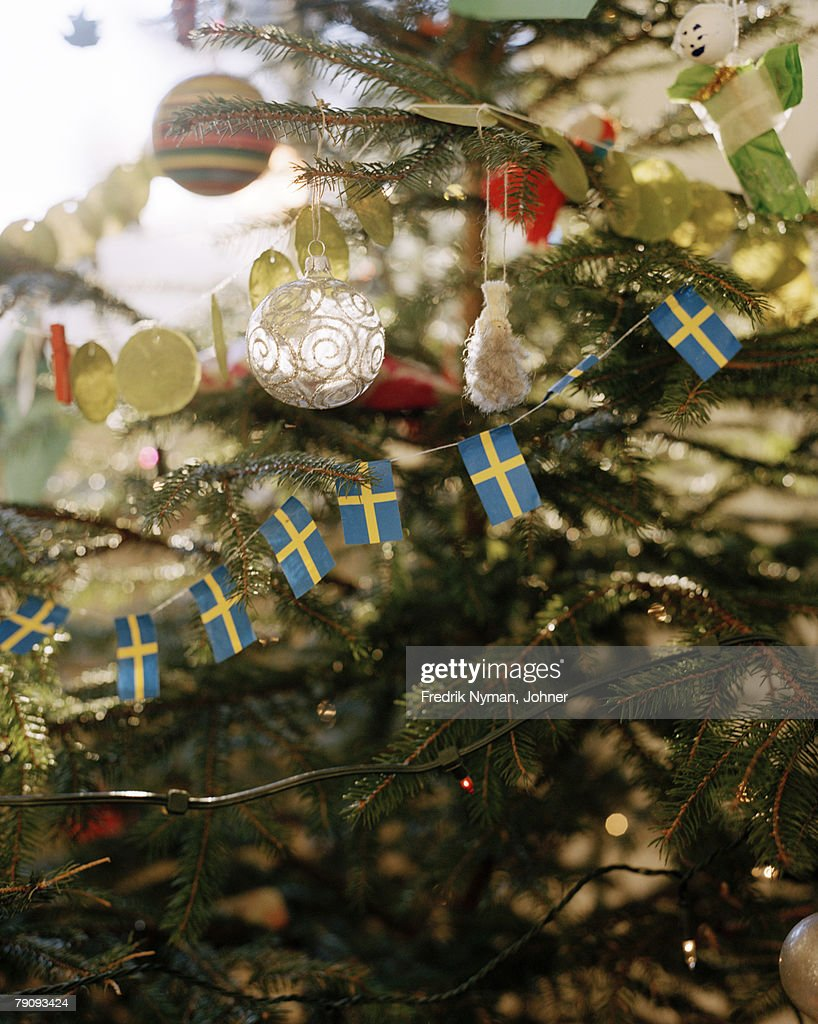Christmas decorations in a Christmas tree. : Stock Photo