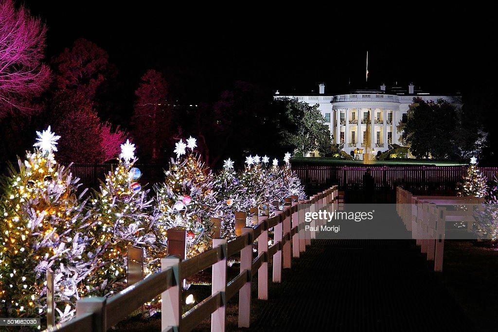 Washington Dc Christmas Tree Lighting