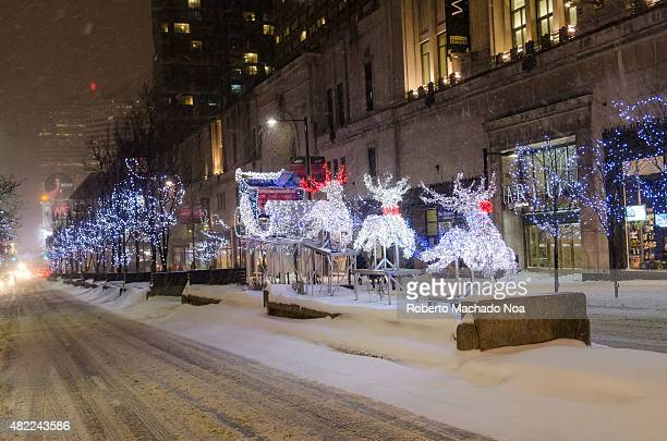 Christmas decorations in street of Toronto at night Lightening deers and trees on a snowy street