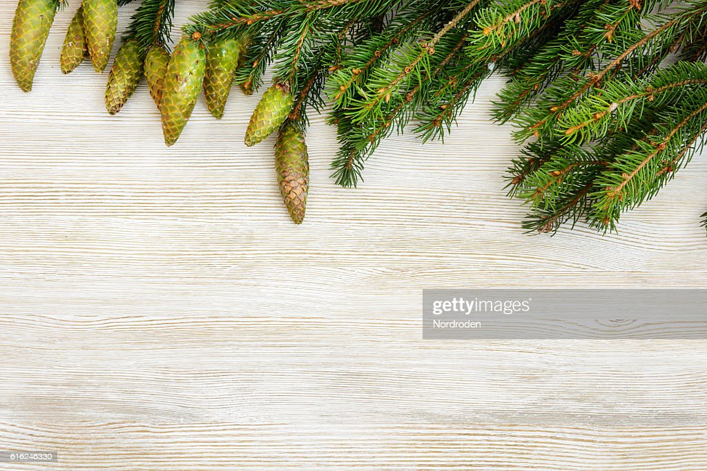 Christmas decorative background. : Stock Photo