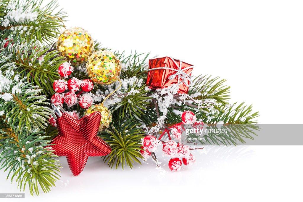 Ramo Di Abete Albero Di Natale Con Bacche Di Agrifoglio E Stile : Foto Stock