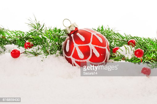 Christmas fir tree on wooden background : Stock Photo