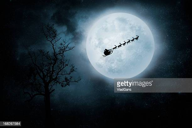Christmas Flight