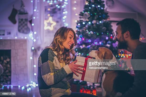 Regalos de Navidad para las mascotas