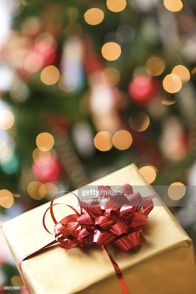 Christmas gift with tree in background : Stock Photo