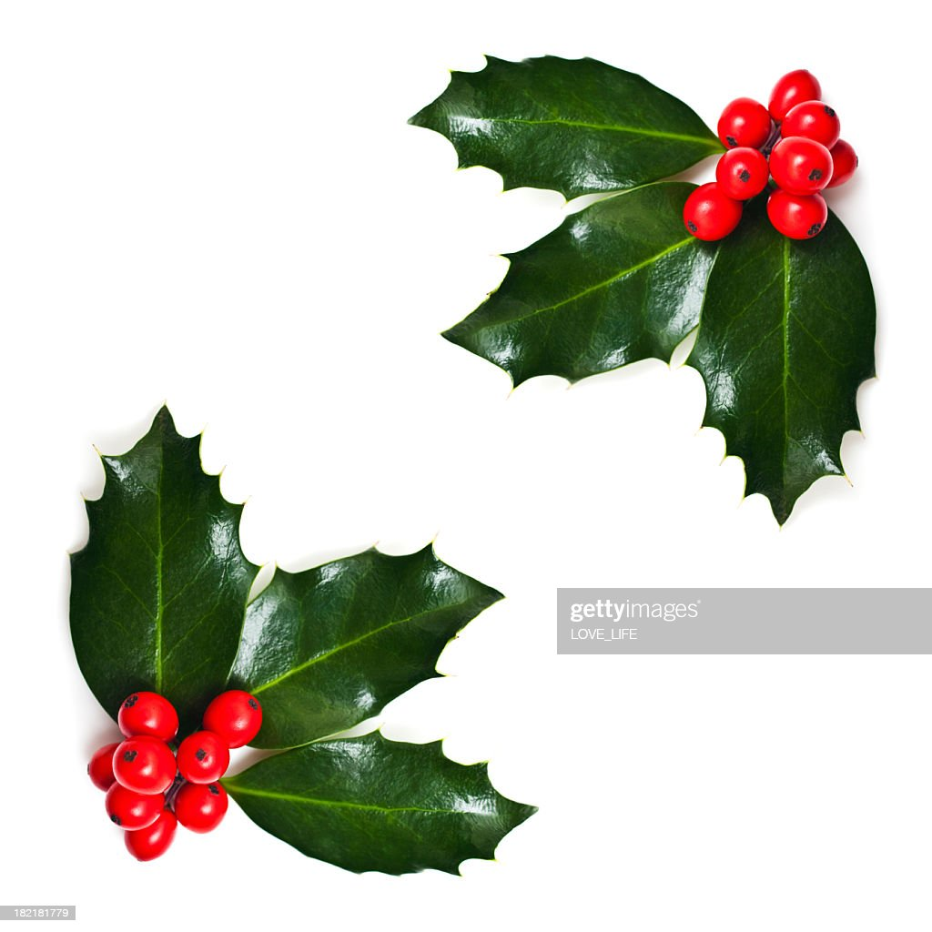 Christmas holly corners stock photo getty images for Holl image