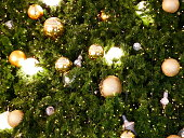 Christmas Tree, Holiday - Event, Decoration, Ball