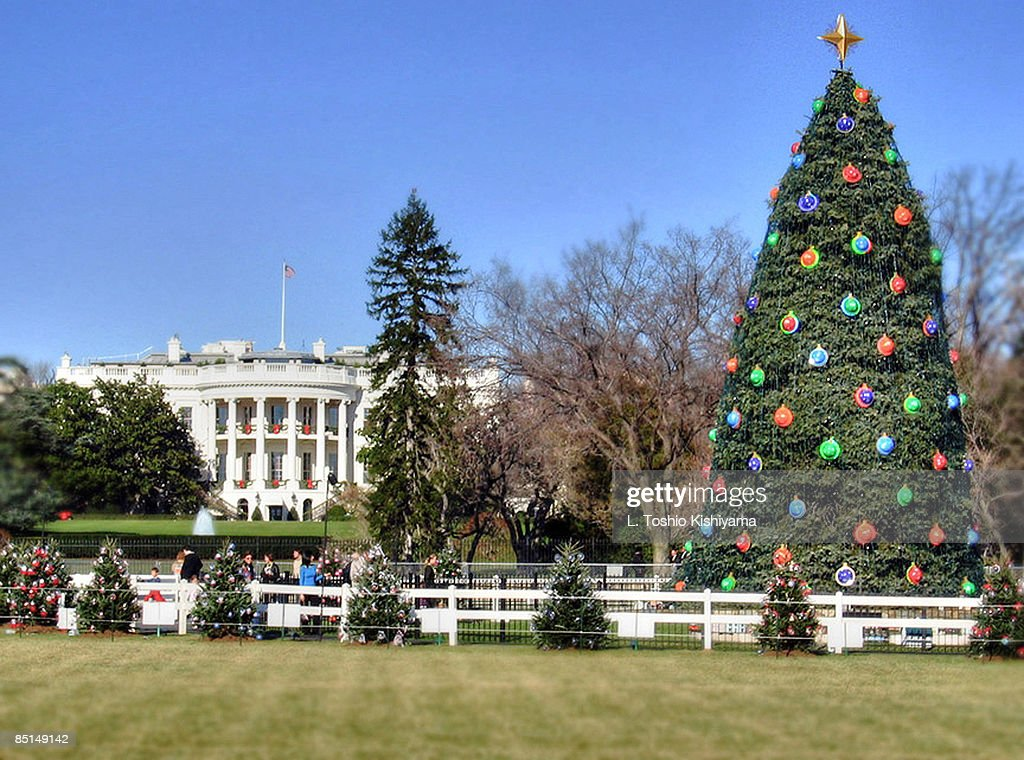 Christmas Lights at the White House : Stock Photo