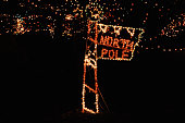 Christmas lights in garden