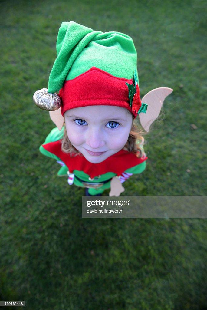 Christmas mischief! : Stock Photo