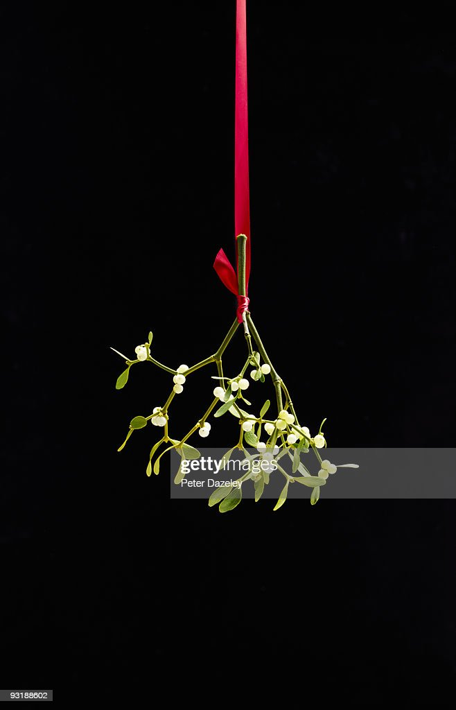 Christmas Mistletoe tied with red ribbon,