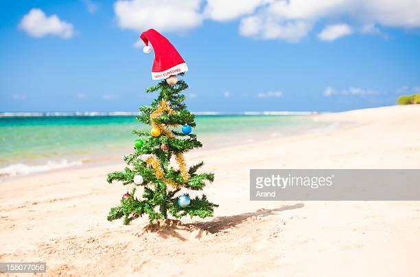 christmas on a beach