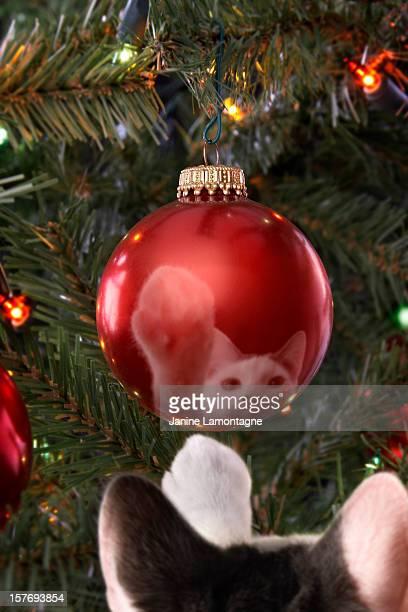 Boule de Noël de chat et jouets
