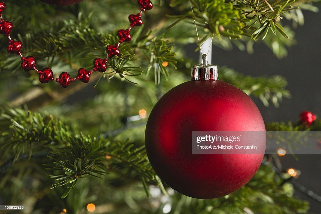 Christmas ornament on tree, close-up