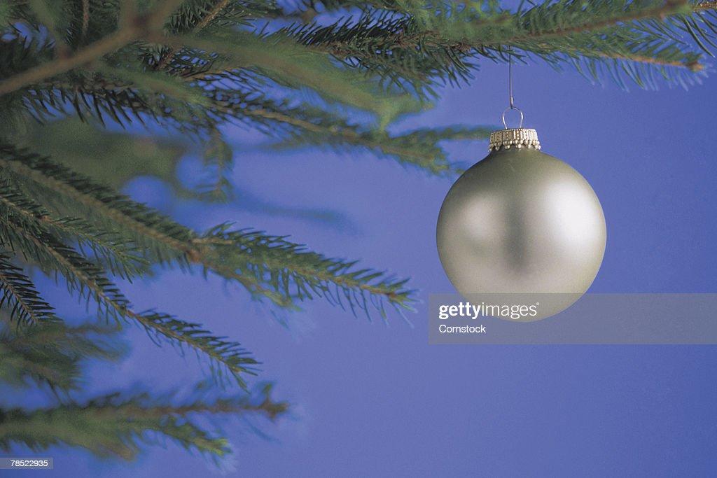 Christmas ornament on tree : Stock Photo