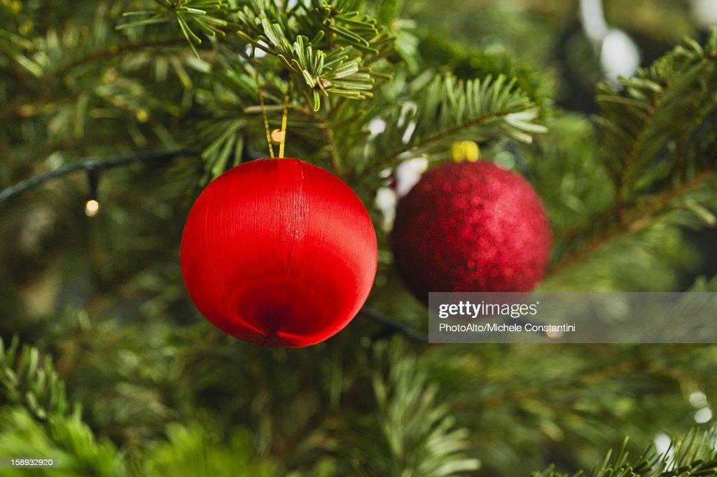 Christmas ornaments on tree : Stock Photo