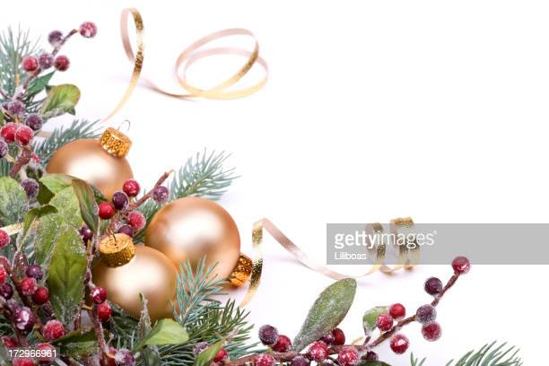 Christmas Pine and Berries, Gold baubles and ribbon on white.