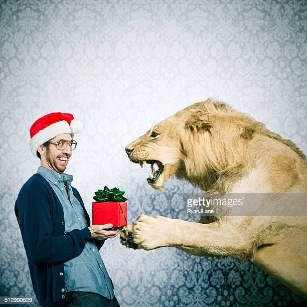 Christmas Present for a Lion