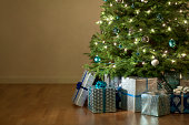 This is a photo of Christmas Presents under the tree. There is a lot of space for copy on the left.Click on the links below to view lightboxes.