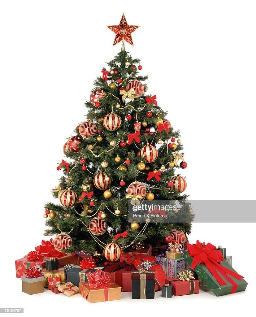 Christmas presents under tree : Stock Photo