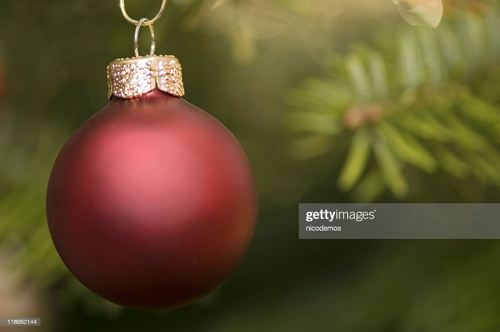Christmas Red Ornament : Stock Photo