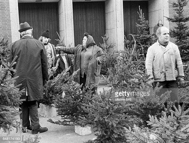 Christmas sale of Christmas trees in a pedestrian zone venders aged 50 to 60 years